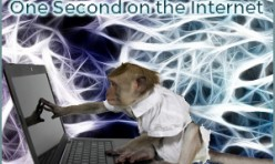 One second on the internet